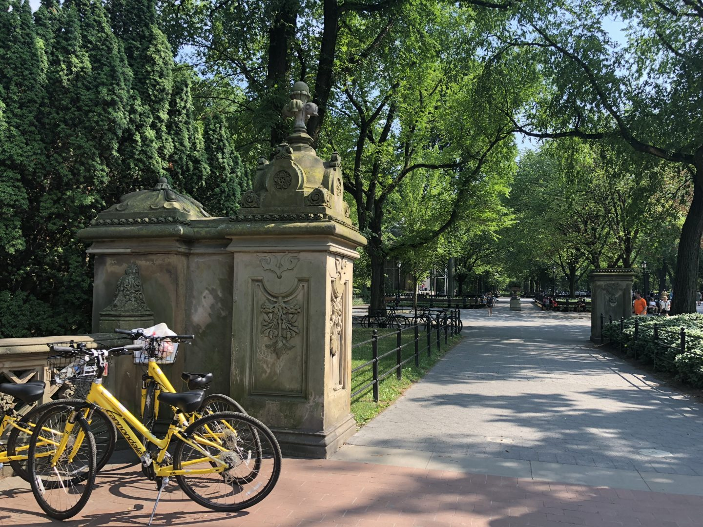 Bike tour in Central Park New York